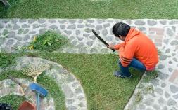 Quality gardening tools
