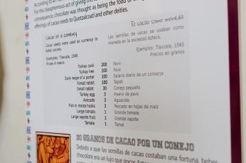 Chocolate-12-12