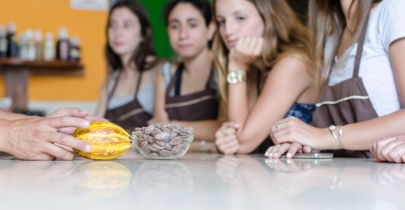 Chocolate-4-4