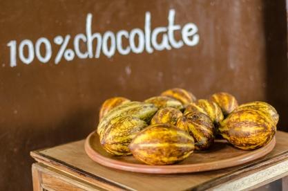 Chocolate-42-42