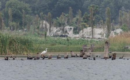 Lake Atitlan-4-4