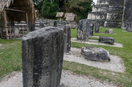 Many stelae providing valuable information about the history of Tikal