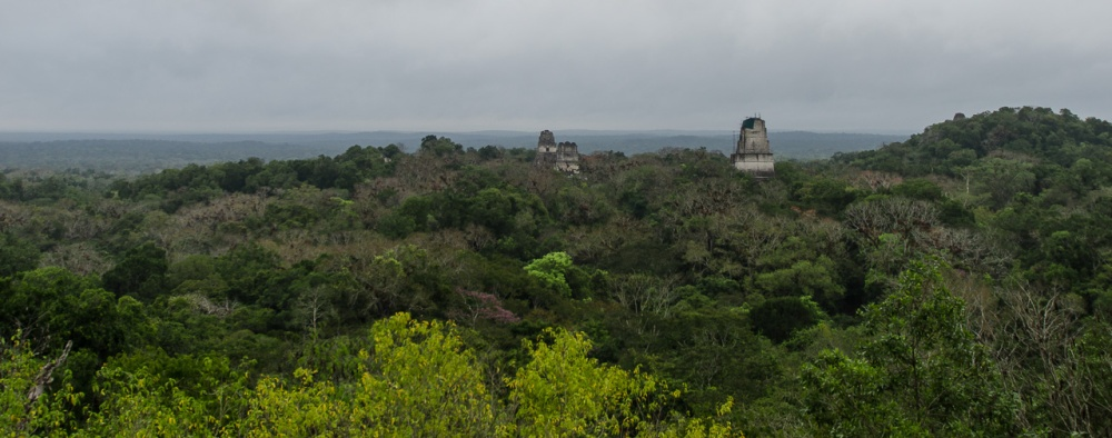 Tikal 2-34