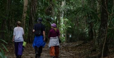 Tikal Day 1-24-24