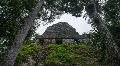 Tikal Day 1-29-29