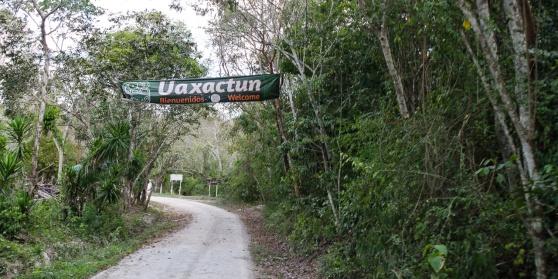 Uaxactun-29